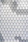 白色和灰色羽毛纹理设计 免版税库存照片