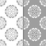 白色和灰色花卉背景 仿造无缝的集 免版税库存照片