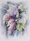 白色和紫罗兰色丁香花束  库存照片