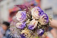 白色和紫色玫瑰花束 图库摄影