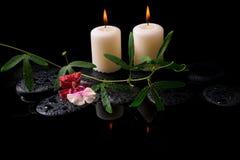 白色和红色兰花(cambria)的美好的温泉概念 免版税库存照片