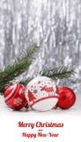 白色和红色圣诞节装饰品和杉树分支在闪烁bokeh背景与空间文本的 Xmas和新年好 库存图片