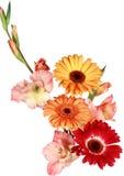 白色和红色花美丽的花束在白色背景的 免版税库存照片