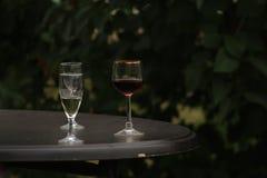 白色和红葡萄酒在庭院的玻璃背景中 库存图片