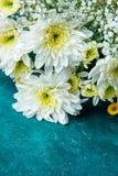 白色和黄色雏菊婴孩呼吸麦花花束在水彩绿松石背景的 华伦泰生日 库存照片