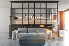 白色和黑客厅,灰色沙发,妇女 免版税库存图片