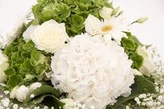 白色和绿色八仙花属花霍滕西亚或Ortensia与白玫瑰和麦 除草装饰装饰品 免版税库存图片