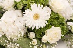 白色和绿色八仙花属花霍滕西亚或Ortensia与白玫瑰和麦 除草装饰装饰品 免版税图库摄影