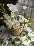 白色响铃花束在篮子的 库存图片