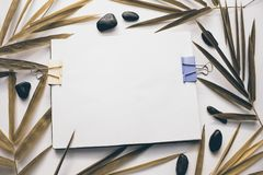 白色图画册页葡萄酒定了调子照片 乌贼属色的叶子 秋天季节横幅模板 免版税库存照片