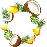 白色圆的背景用菠萝和椰子 库存例证