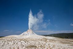 白色圆顶喷泉在黄石国家公园喷发 免版税库存照片