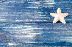 白色圣诞节星 免版税库存照片
