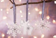 白色圣诞节木头装饰品驯鹿垂悬在树枝的雪剥落 闪耀的诗歌选点燃淡色背景 免版税库存照片