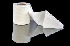 白色在卷的被仿造的卫生纸 库存图片