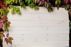 白色垂直的木背景由板条做成 免版税图库摄影