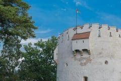 白色塔,布拉索夫,特兰西瓦尼亚,罗马尼亚 库存照片