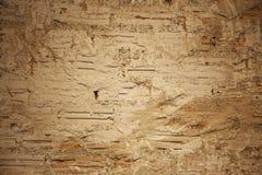 白色墙壁破裂的砖 库存图片