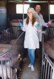白色外套的快乐的兽医在猪圈 库存照片