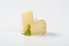 白色外皮乳酪 免版税库存图片