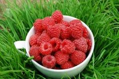 白色大杯子用在草背景的成熟莓  免版税库存图片
