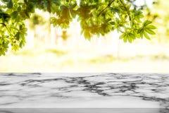 白色大理石柜台有自然背景 库存图片