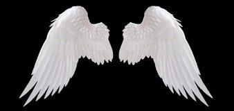 白色天使翼 免版税库存图片
