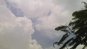 白色天空 库存图片