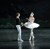 白色天鹅和王子水第一遇见芭蕾的天鹅湖 库存照片