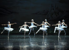 白色天鹅芭蕾天鹅湖队  库存图片