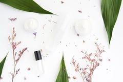 白色奶油色嘲笑的瓶被安置的,空白的标签包裹在绿色叶子背景和花 自然好漂亮的东西或人的概念 免版税库存图片