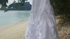 白色婚礼礼服特写镜头在绿色树垂悬 股票录像