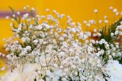 白色婚礼花有黄色背景 库存图片
