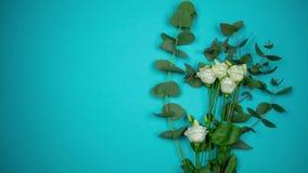白色嫩玫瑰花束与一条透雕细工丝带的在蓝色背景 停止运动 股票视频