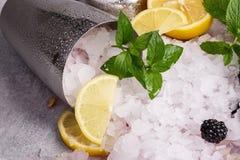 白色寒冷顶视图击碎了在一台金属振动器的冰在灰色背景 冰用裁减酸柠檬、黑莓和薄菏 库存照片