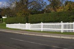白色尖桩篱栅和树篱。 萨里。 英国 图库摄影