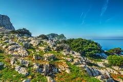 白色岩石和绿色植物品柱的卡奇亚 免版税库存照片