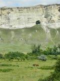 白色岩石Belogorsk-镇克里米亚 免版税库存照片