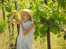 白色帽子的女孩保留我的手刷子成熟绿色葡萄 免版税库存图片