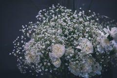 白色康乃馨和白色paniculata花束 免版税库存照片
