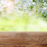 白色开花在有木桌的一个庭院里 库存照片