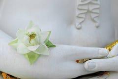 白色开花的莲花在手边菩萨雕象 库存图片