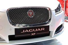 白色捷豹汽车系列XF前面格栅  免版税库存照片