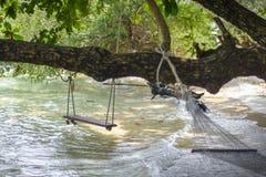 白色摇篮被栓的海滩海滩树 免版税库存照片