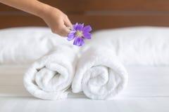 白色旅馆床单和毛巾集合 佣人清洁床 胃口宜人的餐馆客房服务 免版税库存照片
