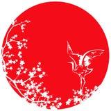 白色日本起重机和佐仓树反对红色太阳导航desi 免版税库存照片