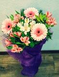 白色春天的花-和桃红色德国锥脚形酒杯 库存照片