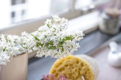 白色春天花束由窗口,文本的一个地方开花 复制空间 免版税图库摄影