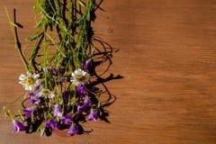 白色春黄菊和紫色吊钟花与绿色叶子在黑褐色木桌上 平的位置,顶视图,文本的拷贝空间 库存图片