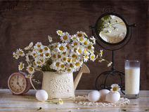 白色春黄菊花束  库存照片
